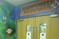Entrance to rainforest outpatients
